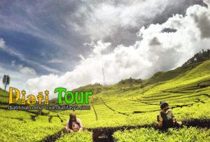 4D3N Bandung Tour Package Hotel
